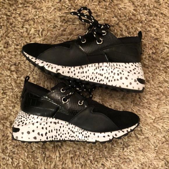 Steve Madden Shoes   Steve Madden Cliff